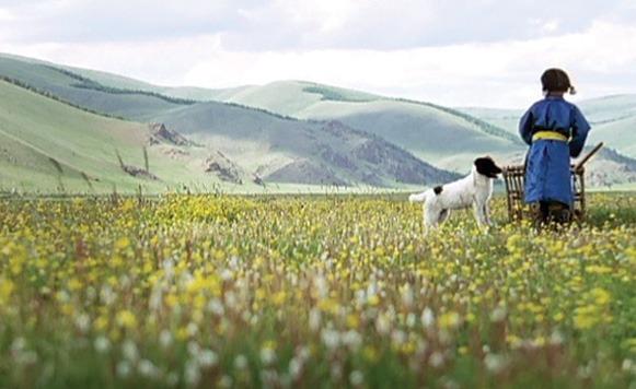 El perro – Die Hoehle des gelben Hundes, dirigida por Byambasuren Davaa – Mongolia (Por Gastón Aliaga)