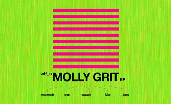 Va-WTF is Molly Grit EP (Free DL!)