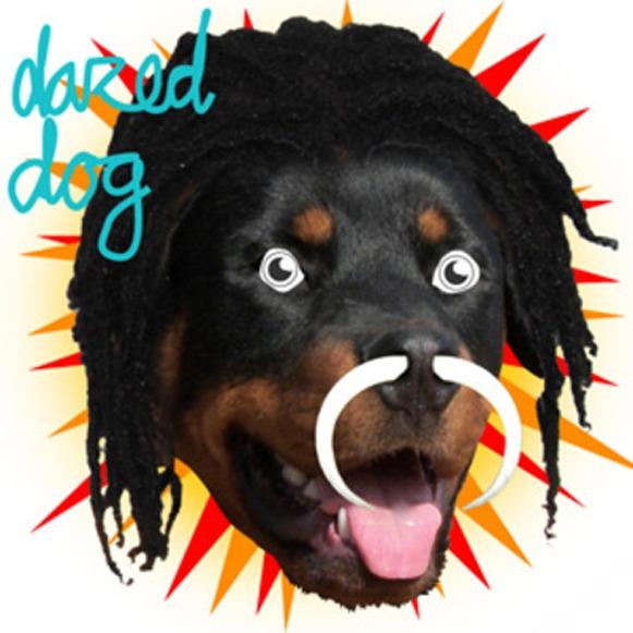 dazed dog gully juke ep