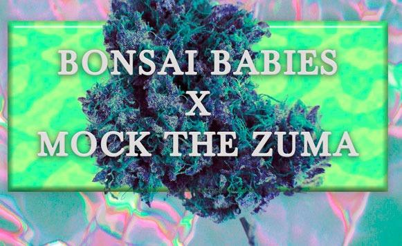 Bonsai Babies y Mock the zuma-Aethernet I