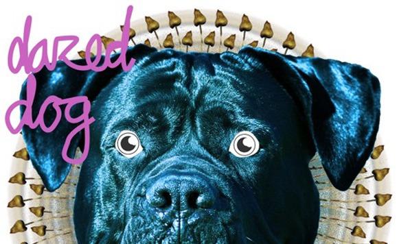 Dazed Dog-Musical nomad EP (por Mario Ramirez – free DL!)
