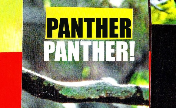 Panther Panther!-Midnight Ritual (por Mauricio Araya aka Mr Toé – Tropical Twista Records – name your price)