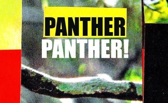 Panther Panther!-Midnight Ritual (por Mauricio Araya aka Mr Toé – Tropical Twista Records – name your price)